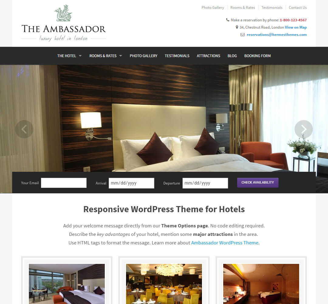 The Ambassador WordPress Theme Screenshot