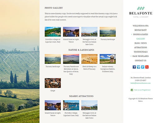 Belafonte Hotel WordPress Theme Preview: Full Screenshot of Homepage