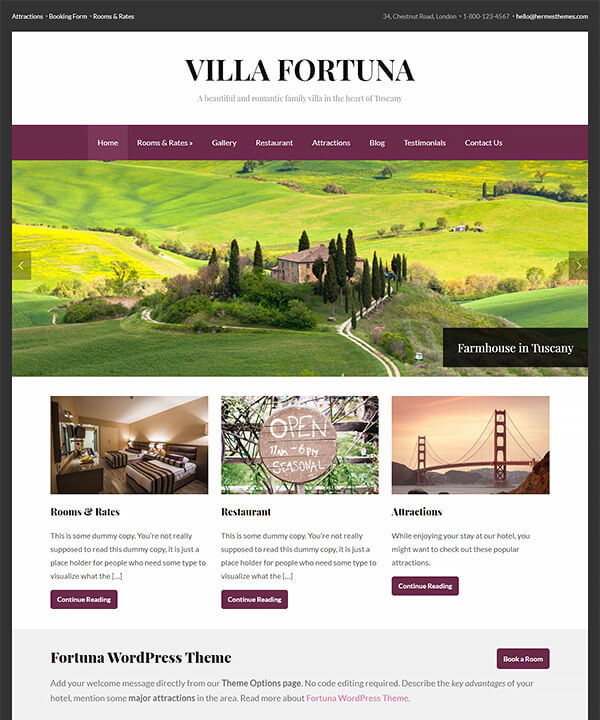 Screenshot of Fortuna WordPress Theme