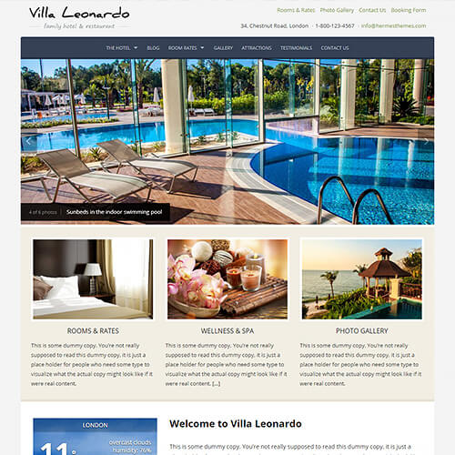 Leonardo WordPress Theme Screenshot