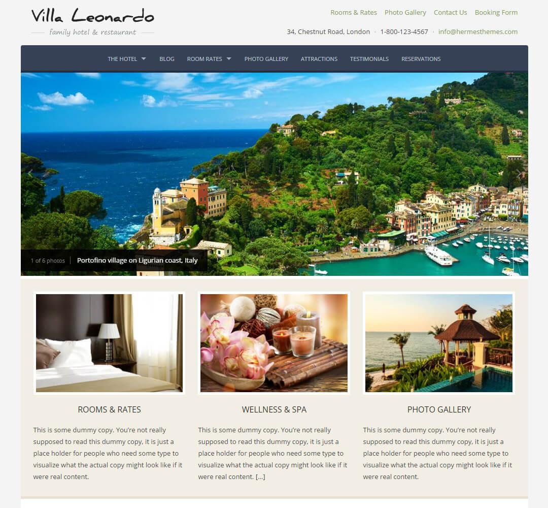 Leonardo WordPress Theme Screenshot