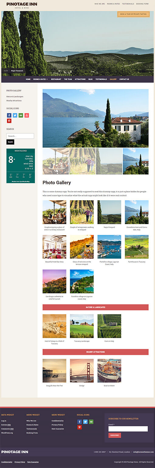 Pinotage Hotel WordPress Theme Preview: Full Screenshot of Homepage