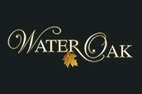 Water Oak on Lake Conroe